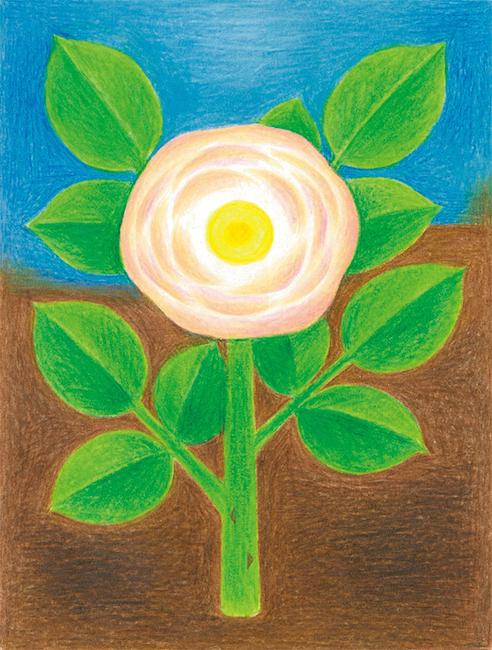 中尾紀久子個展  「植物とやきものと音楽と」